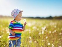 Bebê que está na grama no fieald com dentes-de-leão fotografia de stock