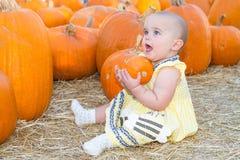 Bebê que guarda a abóbora Foto de Stock Royalty Free