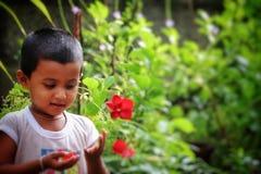 Bebê que joga com flores imagens de stock