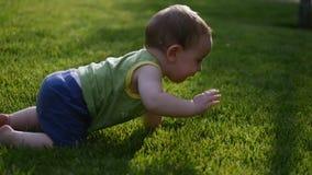 Bebê que rasteja lentamente no prado de O mundo pequeno do bebê Movimento lento vídeos de arquivo