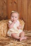 Bebê que senta-se contra Straw Bale Imagem de Stock