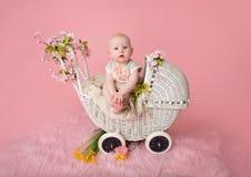 Bebê que senta-se no carrinho de criança Imagens de Stock Royalty Free