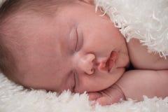 Bebê que toma uma sesta Imagens de Stock