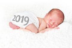 Bebê 2019 recém-nascido fotografia de stock