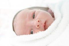 Bebê recém-nascido Imagens de Stock