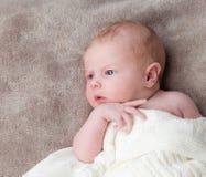 Bebê recém-nascido Foto de Stock Royalty Free