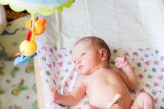 Bebê recém-nascido, 3 dias velho Imagens de Stock
