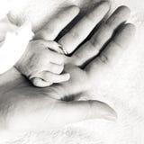 Bebê recém-nascido do close up que guarda seu dedo das mães Fotografia de Stock Royalty Free