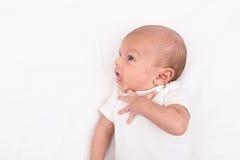 Bebê recém-nascido na folha branca Fotografia de Stock Royalty Free