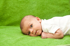 Bebê recém-nascido que coloc Imagens de Stock Royalty Free