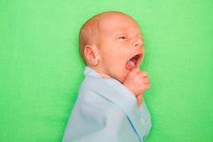 Bebê recém-nascido que coloca na tampa verde Foto de Stock Royalty Free
