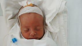Bebê recém-nascido que dorme em um gotejamento em um hospital vídeos de arquivo