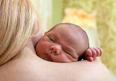 Bebê recém-nascido que dorme no ombro da matriz Fotografia de Stock Royalty Free