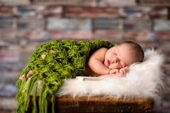 Bebê recém-nascido que dorme pacificamente Imagem de Stock Royalty Free