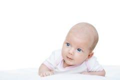 Bebê recém-nascido uma idade de sete semanas Foto de Stock Royalty Free