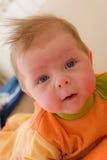 Bebê seis meses de jogo foto de stock