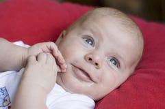 Bebê surpreendido Fotos de Stock