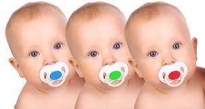 Bebês Foto de Stock
