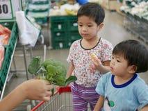 Bebês asiáticos pequenos que olham brócolis frescos verdes em sua mão do ` s da mãe imagens de stock royalty free