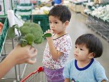Bebês asiáticos pequenos que olham brócolis frescos verdes em sua mão do ` s da mãe foto de stock royalty free