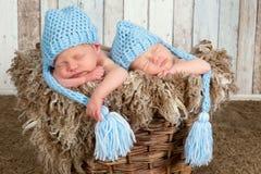 Bebês azuis do gêmeo do chapéu Foto de Stock Royalty Free