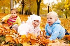Bebês do outono Imagens de Stock Royalty Free