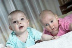 Bebês espantados Imagem de Stock