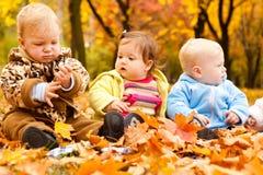 Bebês no parque do outono imagens de stock