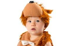 Bebé adorable, vestido en el traje del carnaval del oso de peluche, aislado en el fondo blanco. El concepto de niñez y de día de f Foto de archivo