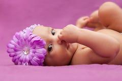 Bebê afro-americano pequeno adorável que olha - peopl preto Fotografia de Stock