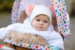 Beb? bonito pequeno bonito que senta-se no pram ou no carrinho de crian?a no dia do outono Crian?a saud?vel feliz que vai para um foto de stock