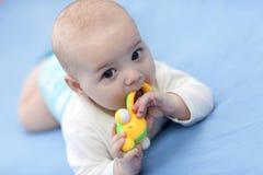 Bebê com chocalho Fotografia de Stock Royalty Free