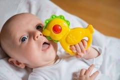 Bebé con traqueteo en el puño afianzado con abrazadera Imagenes de archivo