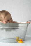 Bebê da cuba Fotografia de Stock Royalty Free