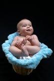 Bebé de la cesta Imágenes de archivo libres de regalías