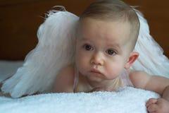 Bebé del ángel Foto de archivo