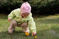 Bebé del resorte Imagen de archivo