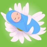 Bebé durmiente en margarita Foto de archivo