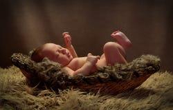 Bebé en un retroceso con el pie de la cesta Fotografía de archivo