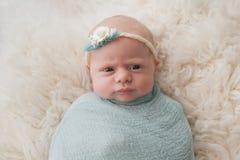 Bebê envolvido com expressão bonito Imagem de Stock Royalty Free