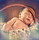 Bebê na cesta Imagem de Stock