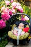 Bebé que duerme en un asiento de coche Imagenes de archivo