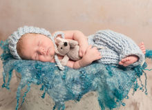 Bebé recién nacido hermoso que duerme en la manta de lana Imagen de archivo libre de regalías