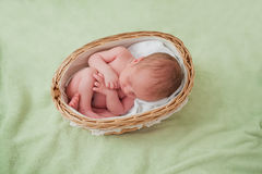 Bebê recém-nascido caucasiano Fotografia de Stock Royalty Free