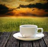 Beba el café caliente en la granja del arroz por mañana Imágenes de archivo libres de regalías