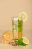 Beba el vidrio, la rebanada de limón y el palillo de canela imagen de archivo libre de regalías