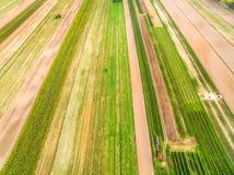 Bebaute Felder gesehen von der Vogel ` s Augenansicht Landwirtschaftliche Landschaft von der Luft Linien und Farben Lizenzfreies Stockfoto