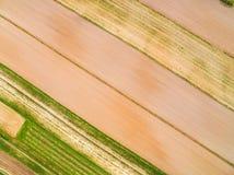 Bebaute Felder gesehen von der Vogel ` s Augenansicht Linien und Farben geschaffen durch die Felder gesehen von der Luft Stockfotos