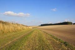 Bebaute Felder im Herbst Lizenzfreies Stockbild