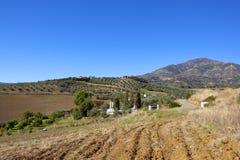 Bebaute Felder und Berge von Andalusien Stockbild